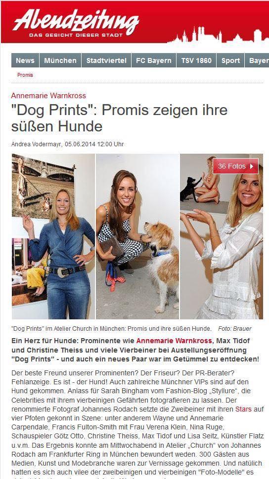dog_az